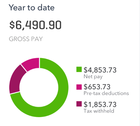 How an employee can view their year to date earnings and deductions