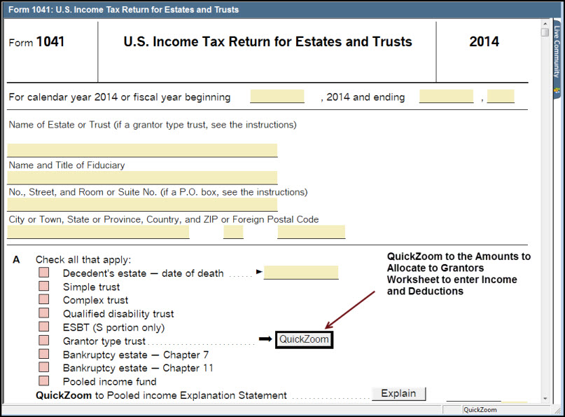 Entering Income And Deductions Allocated To 1041 Grantor Trust R